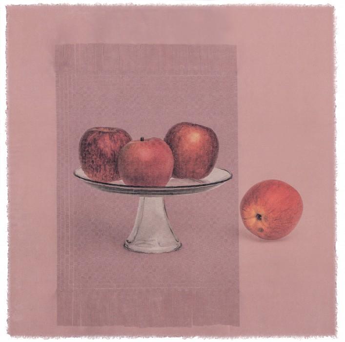 seesaw  rm 01 _ apple