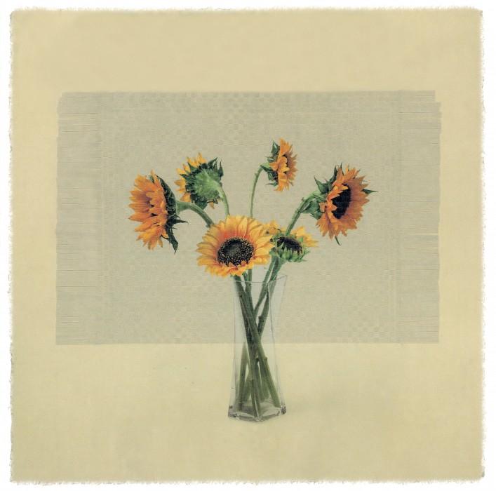 seesaw  rm 04 _ sunflower