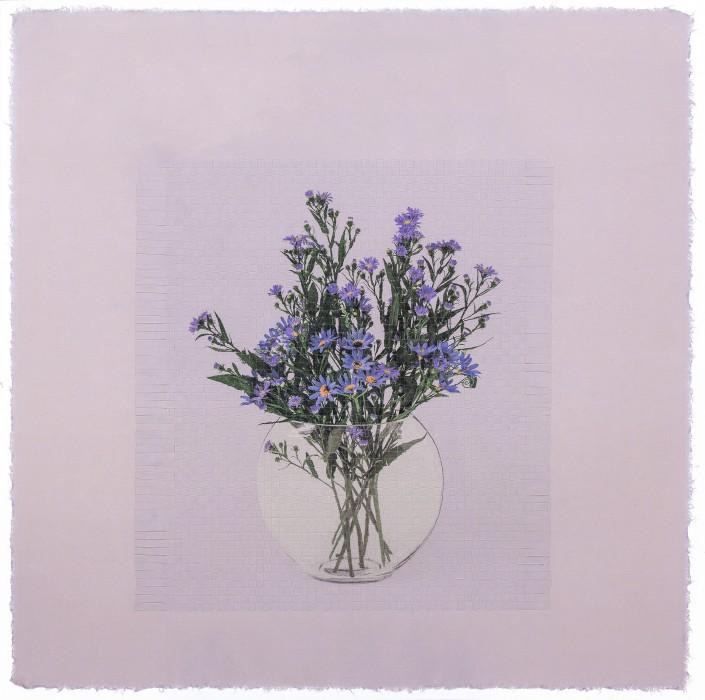 seesaw  rm 35 _ chrysanthemum