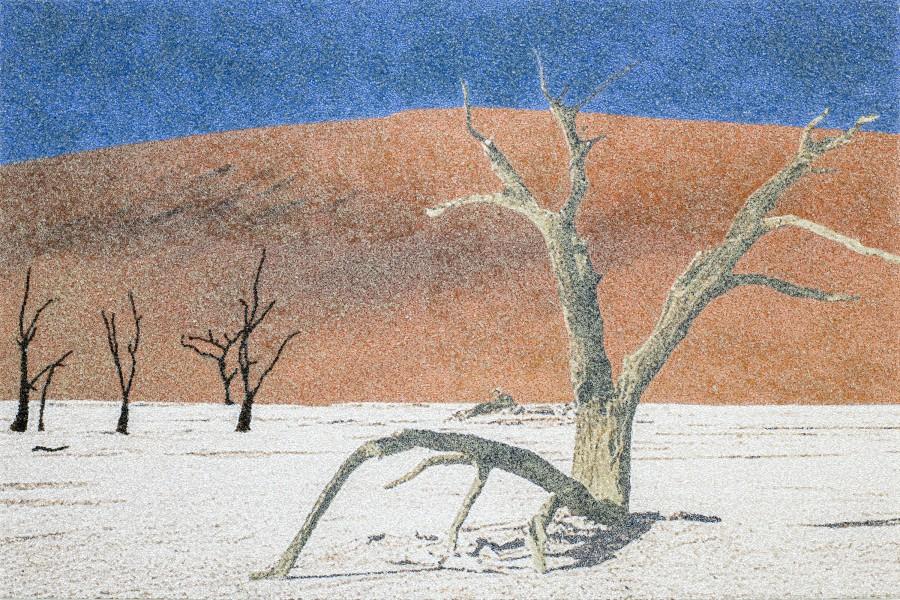 counterattack E 24_Namibia desert